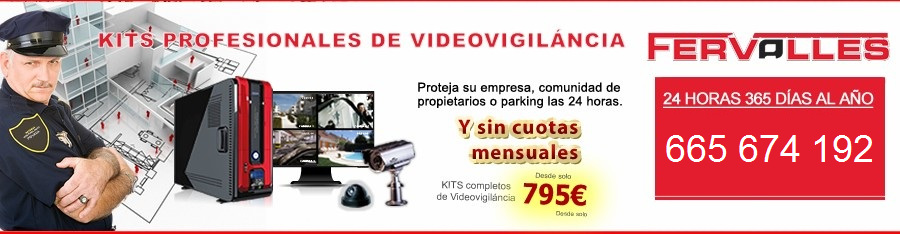 camaras de video vigilancia alicante